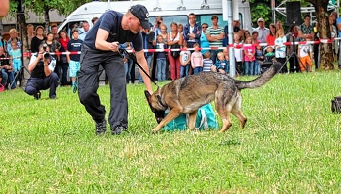 Die gut ausgebildeten Hunde im Dienste der Polizei zeigten ihr Können.