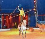 Unterhaltsame Kunststücke mit Esel, Pferden und einem Reiter. Foto: Schlecker