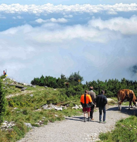 Auf dem neuen Panorama-Weg gibt es viel zu sehen und zu erleben. Foto: hö