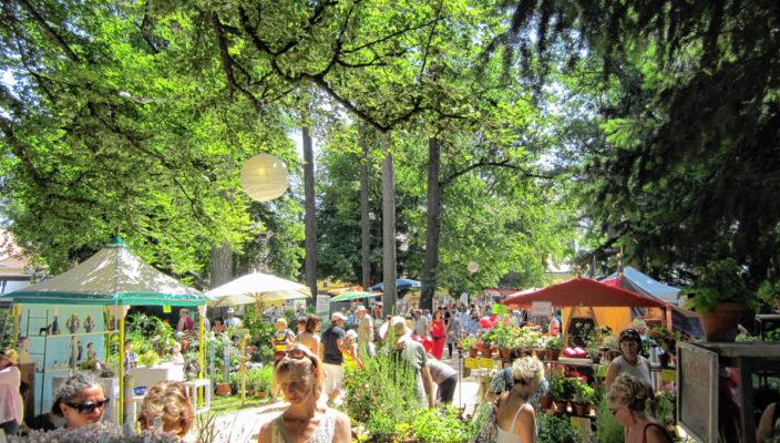 Paradies für Pflanzenfreunde in Tüßling.