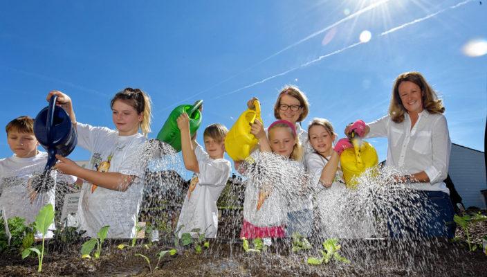 Der Schulgarten, ein gemeinsames Projekt das Spaß macht!