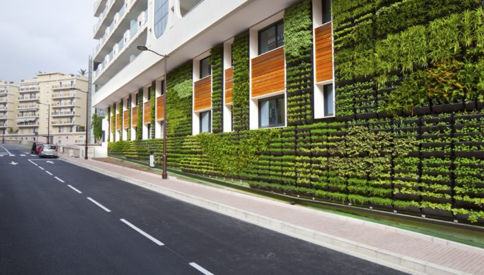 Begrünte Fassaden schaffen ein deutlich kühleres Stadtklima.