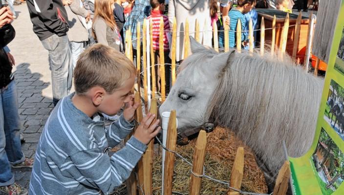 Auf Augenhöhe zu den Tieren, das gefällt den Kinden!
